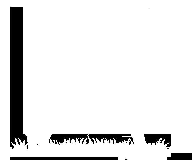 VAN BOOM TOT BOOM Logo